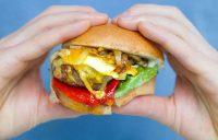 Hamburger-in-hands-small-file.jpg
